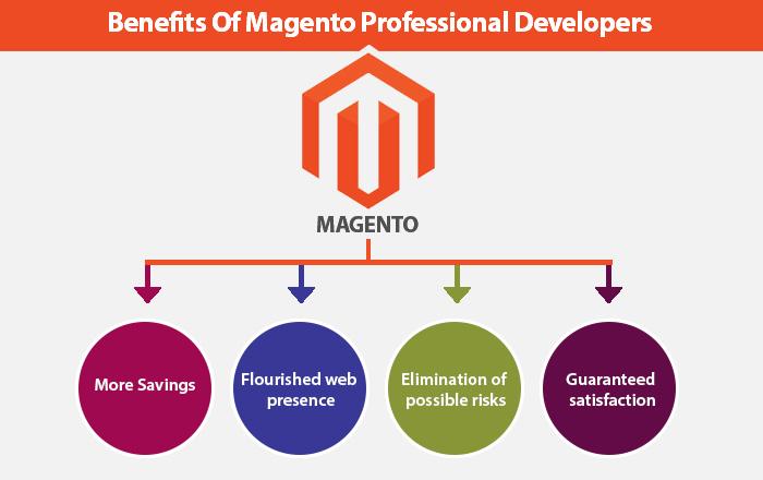 Magento Professional Developers